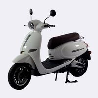 EEC COC 4000W Motor 75km/h Top Speed Lithium Battery Adults Electric Motorcycle Scooters Totoro