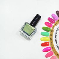 Fashion Private Label Nail polish /Glitter Nail polish brands