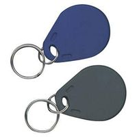 Key Tag/IC Key Tag/Label Tag/Key Tags/Keyfob/Key Fob/Proximity Card/RFID Card/Key Tag/Door Card/key