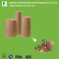 brown kraft paper roll with PE