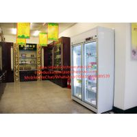 Medical Fridge Pharmaceutical Refrigerator