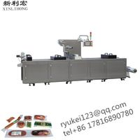 DLZ-420 full-automatic continuous stretching vacuum packaging machine