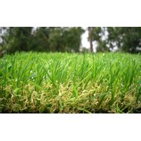 Airport use artificial grass thumbnail image