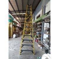 Industrial Trade FRP Ladder