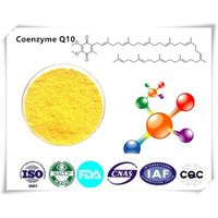Coenzyme Q10 (CoQ10) 99.5% Cas number:303-98-0 HPLC 1kg/bag