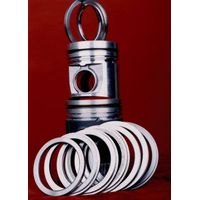 Alfin Ring carrier for piston
