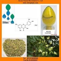 Sophora japonica extract with Quercetin,Kaempferol,Genistein