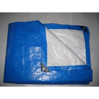 pe tarpaulin, blue white 4m*5m pe tarpaulin