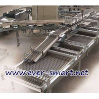 Biscuits Automatic Packaging Line