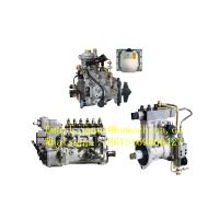 Fuel Injection Pump PART NO. 612600081235 For WEICHAI POWER WD12