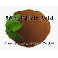 95% Fulvci Acid