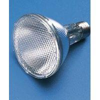 Ceramic Metal Halide Lamp thumbnail image