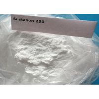 Sus 250 Testosterone Blend Sustanon 250 Powder Muscle Builder Weight Loss High Purity,Powder/Oil