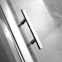 ELLIPS shower door