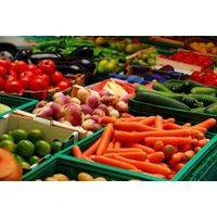 Fresh Vegetables thumbnail image