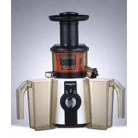Electric slow juicer