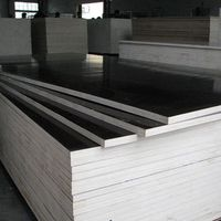2016 year 5.2mm construction plywood