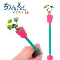 Eco-friendly Mini Flower Pot with paper pencil