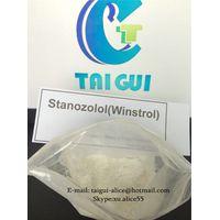 Stanozolol Winstrol Stanozolol Winstrol Stanozolol Winstrol