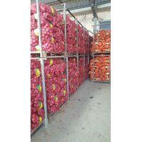 qingdao songyuan food co.,ltd