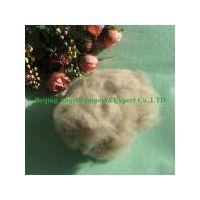 sheep cashmere