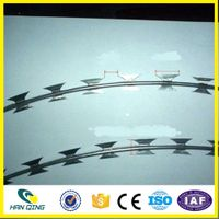 hot sale of hot-dipped galvanized razor barbed wire mesh thumbnail image