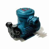 AC Ex-Proof transfer pump