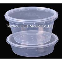 plastic thin wall container mould
