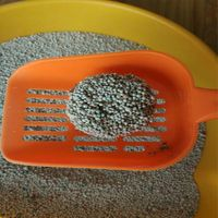 hot sales bentonite cat litter