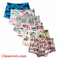 Closecret Kids Series Soft Cotton Toddler Underwear Little Boys' Assorted Boxer Briefs(Pack of 6) thumbnail image