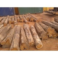 teakwood,ironwood,rosewood,log timber,sawn timber thumbnail image