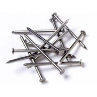 Polished common nails offered by HEBEI SAMSUNG WIRE MESH MANUFACTURE CO., LTD
