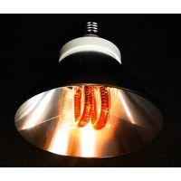 ECORAY-Lamp