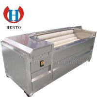 Full Automatic Potato Washing And Peeling Machine