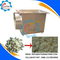 Hight Quality Vegetable Washing Machine For Sale