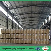 Sell Coated Duplex Board Grey Back for Packaging