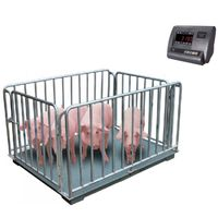 LS livestock scales animal floor scales/weighing scales for pig