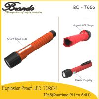 Explosion-proof LED Torch with OLED Display