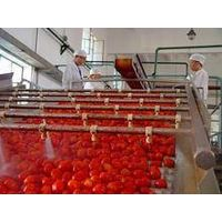 Tomaot Paste CB/HB 28-30% 3032% 36-38%