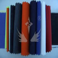 CN fireproof fabric/ Fire resistant fabric