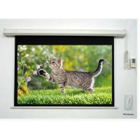 ALLY High Quality Electric Projection Screen