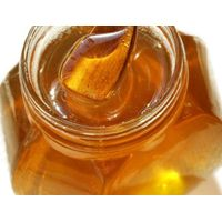 100% organic FENNEL HONEY