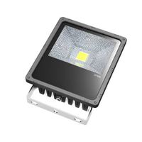 50W Max. LED Floodlight, Floodlight, LED Flood Light, Flood Light, Floodlights, LED Projector lamp,