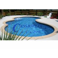 irregular shape swimming pool