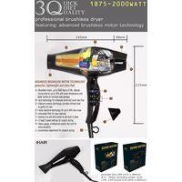 Ionic brushless hair dryer
