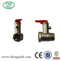 Safety Valve for Water Heater thumbnail image
