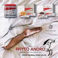 Pytho Andro Honey thumbnail image