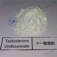 Testosterone Undecanoate Powder / Andriol CAS 5949-44-0 thumbnail image