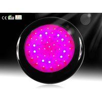 2012 new style,high quality 50w led grow light thumbnail image