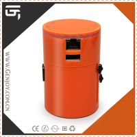 China Supplier GENJOY Patented Travel Charger Adapter with USB